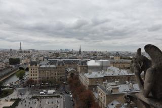 Наблюдая за Парижем