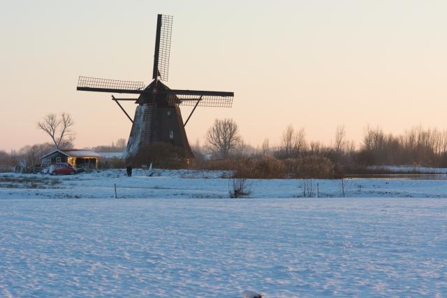De molen in de De Steendert Wadenoijen - NCN Forum