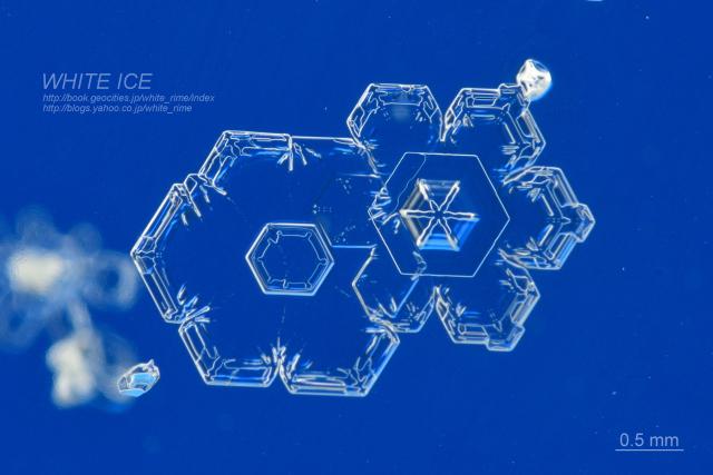 合体した雪結晶